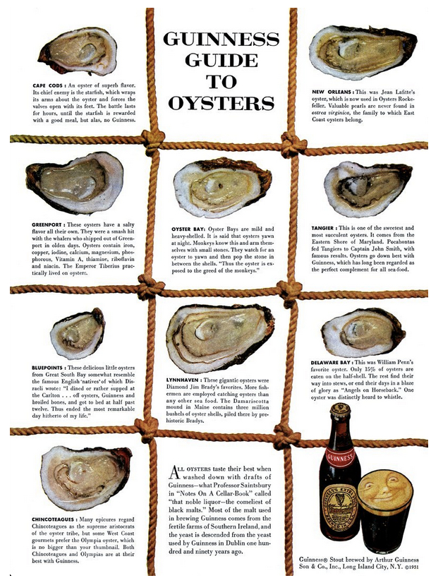guiness guide to oysters