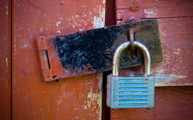 HTTPS vs HTTP: Which You Should Use for Your Website